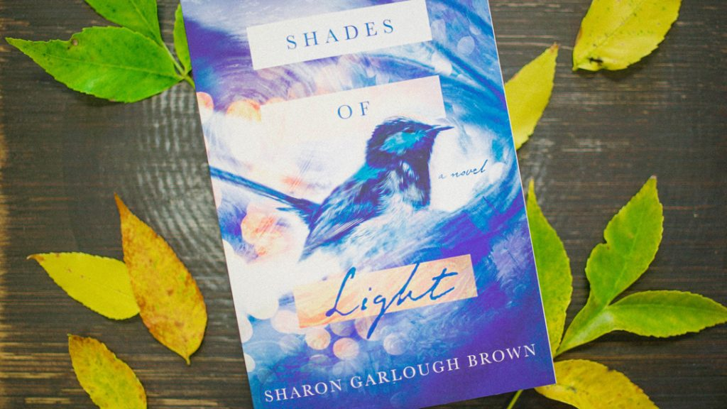 Shades of light book cover