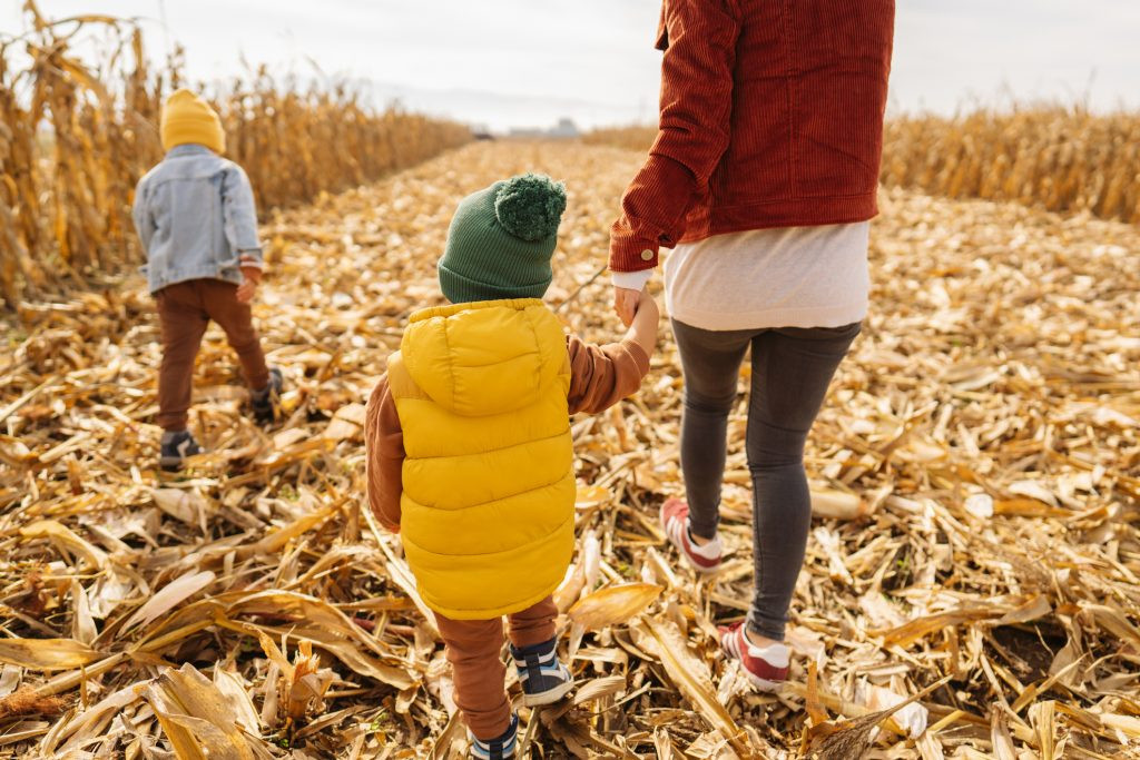 Exploring cornfields with our mom